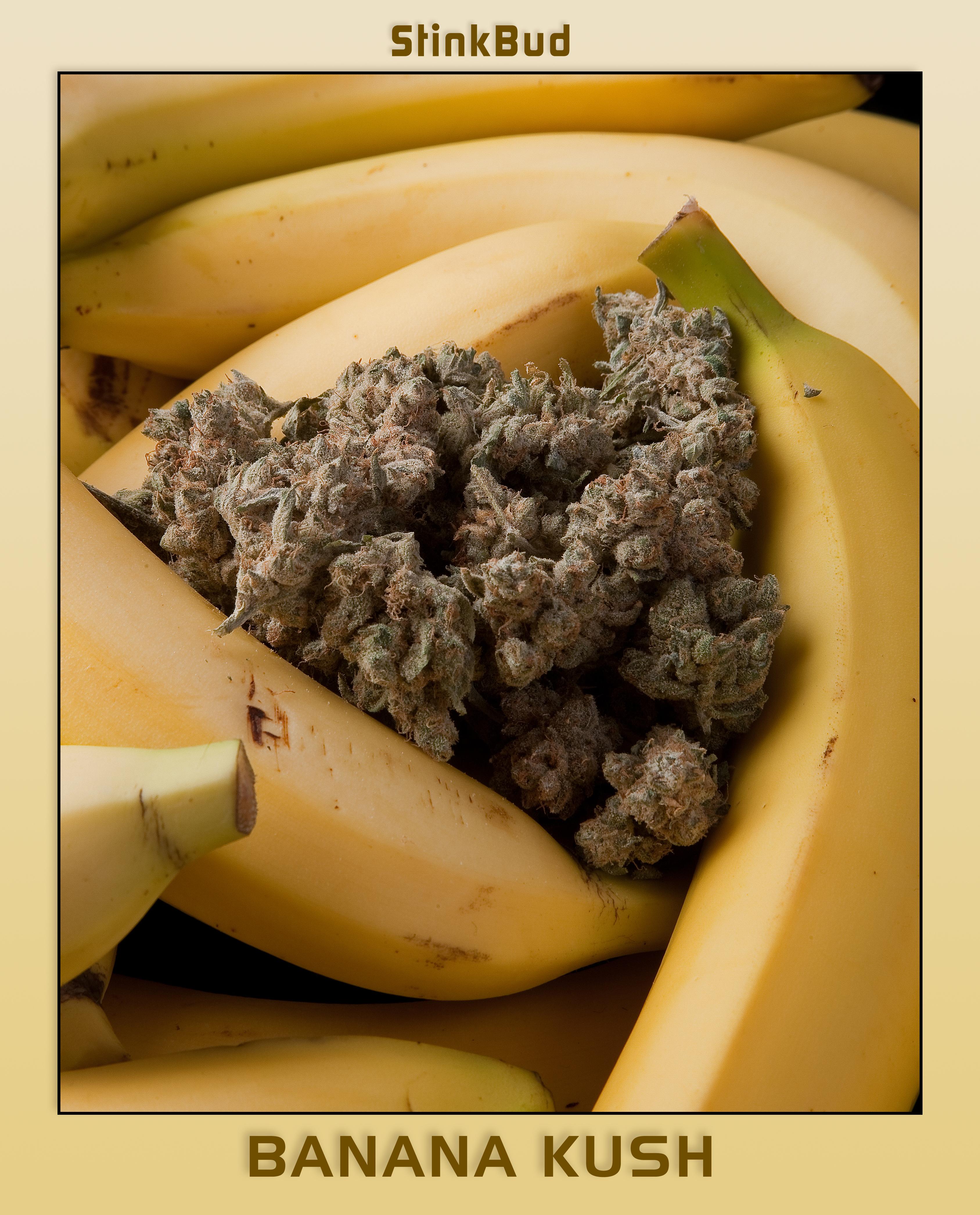 banana_kush