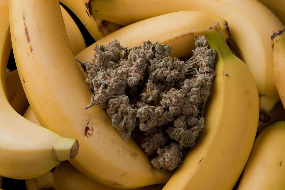 banana_kush33
